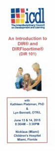 The cover of the brochure for Miami DIRFloortime training